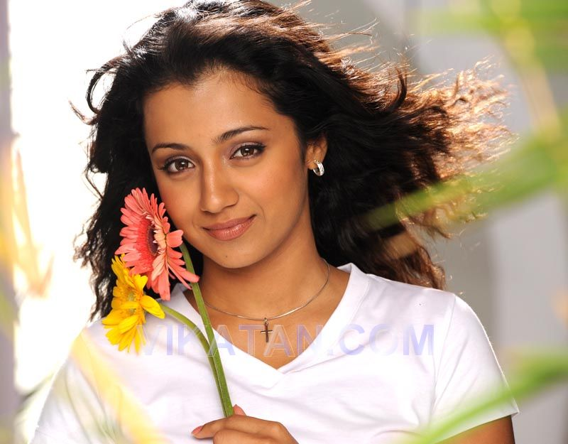 Trisha - Picture Actress